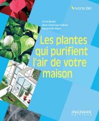 Les plantes qui purifient l'air de votre maison