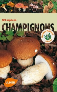 Champignons : 420 espèces