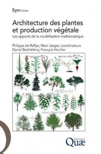 Architecture des plantes et production végétale: Les apports de la modélisation mathématique