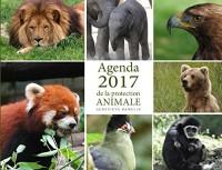 Agenda de la protection animale
