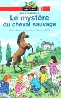 Le mystère du cheval sauvage