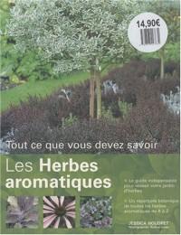 Les herbes aromatiques : Tout ce que vous devez savoir