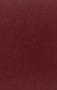 Le roman français au xviie siecle, de l'astree au grand cyrus. avec un index analytique de e.f.
