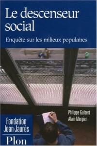 Le descenseur social : Enquête sur les milieux populaires