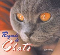 Regards de chats