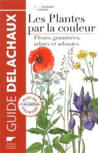 Guide Delachaux des Plantes par la Couleur (Ne)