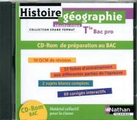 histoire-geographie education civique terminale bac pro cd-rom pour la classe -grand format- 2011