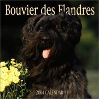 Bouvier Des Flandres 2004 Calendar