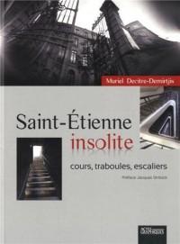 Saint Etienne insolite