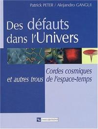 Des défauts dans l'Univers : Cordes cosmiques et autres trous de l'espace-temps