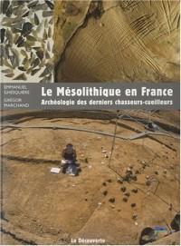 Le Mésolithique en France : Archéologie des derniers chasseurs-cueilleurs