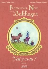 Promenons-nous avec Balthazar : Yéti y es-tu ?