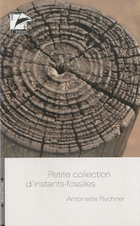 Petite collection d'instants-fossiles