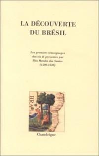 La découverte du Brésil : Les premiers témoignages