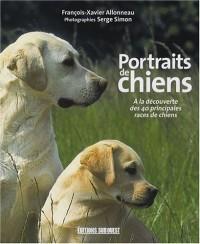 Portraits de chiens : A la découverte des 40 principales races de chiens