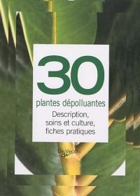 30 plantes dépolluantes : Description, soins et culture, fiches pratiques