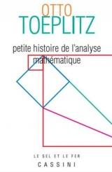 Petite histoire de l'analyse mathématique