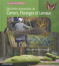 Au coeur du Morbihan : Les forêts domaniales de Camors, Floranges et Lanvaux