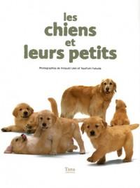 Les chiens et leurs petits