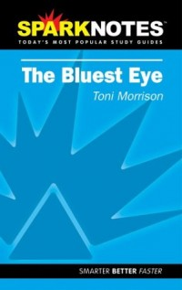 Sparknotes the Bluest Eye