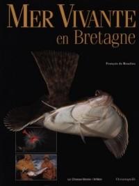 Mer vivante en Bretagne
