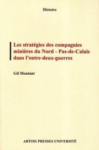 Les stratégies des compagnies minières du Nord-Pas-de-Calais dans l'entre-deux-guerres : Coopération et rivalité