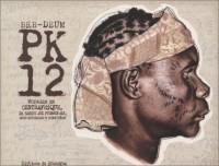 Pk-12 : Voyages en centrafrique, de Bangui aux Pygmées Aka, entre mutineries et coups d'état