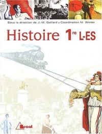 Histoire 1ère L-ES