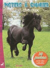 Les chevaux : Poster à colorier