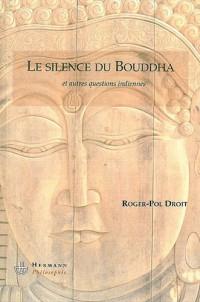 Les silences du Bouddha : Et autres questions indiennes