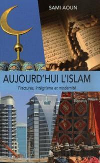 Aujourd'hui l'islam : Fractures, intégrisme et modernité