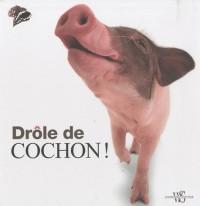 Drole de Cochon