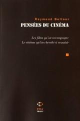 Pensées du cinéma: Les films qu'on accompagne. Le cinéma qu'on cherche à ressaisir