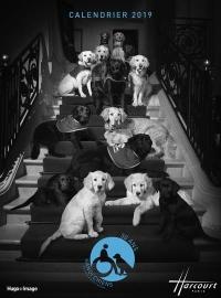 Calendrier mural handi'chiens Harcourt