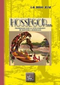 Hossegor : Promenades sur la côte d'argent, de Bayonne à Bordeaux