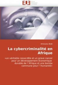 La cybercriminalité en Afrique: «un véritable casse-tête et un grave cancer pour un développement économique   durable de l'Afrique et une bombe commune pour l'Humanité»
