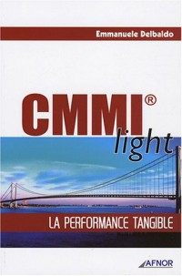 CMMI light : La performance tangible