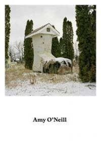 Amy O'Neill -  Suburban Imagination