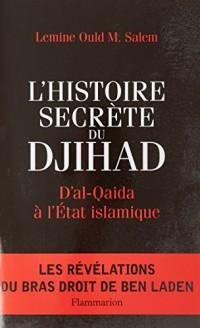 L'Histoire secrète du Djihad : D'al-Qaida à l'Etat islamisque
