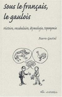 Sous le français, le gaulois : Histoire, vocabulaire, étymologie, toponomie