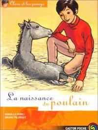 Clara et les Poneys, tome 3 : La Naissance du poulain