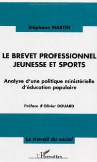 Le brevet professionnel jeunesse et sports : Analyse d'une politique ministérielle d'éducation populaire
