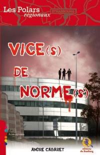 Vice(s) de norme(s)