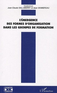 L'émergence des formes d'organisation dans les groupes de formation