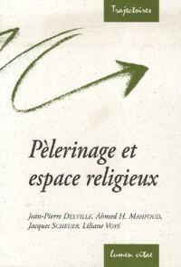 Pèlerinage et espace religieux