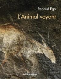 L'Animal voyant : Art rupestre d'Afrique australe