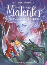 Malenfer, Tome 4 : Les terres de magie