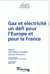 Gaz et électricité : un défi pour l'Europe et pour la France (CAE n.74)
