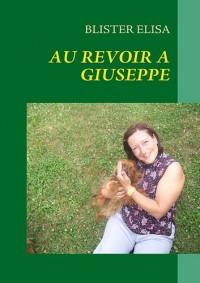 Au Revoir a Giuseppe