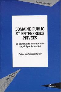 Domaine public et entreprises privées : La domanialité publique mise en péril par le marché